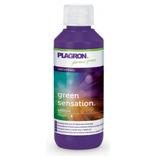 Green sensation 100 ml