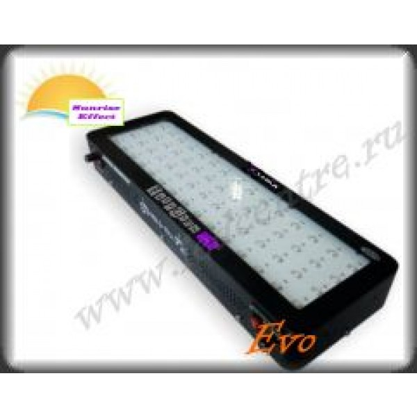 "EasyGrow Evo 275W BAR ""SUNRISE EFFECT"