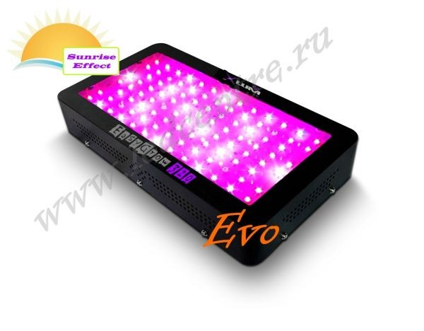 "EasyGrow Evo 320W ""SUNRISE EFFECT"""