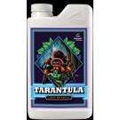 Tarantula (Beneficial bacteria)